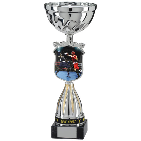 Cup Trophy Boxing World