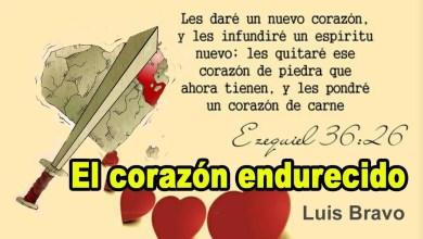 Photo of Luis Bravo – El corazón endurecido