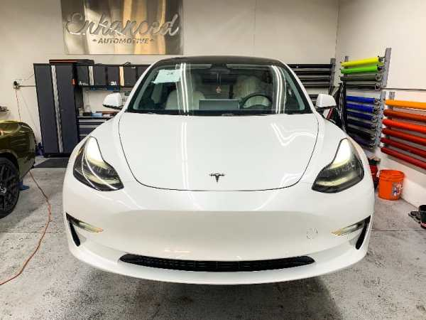 tesla 3 pain protection