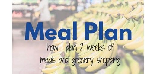 bi-weekly meal plan