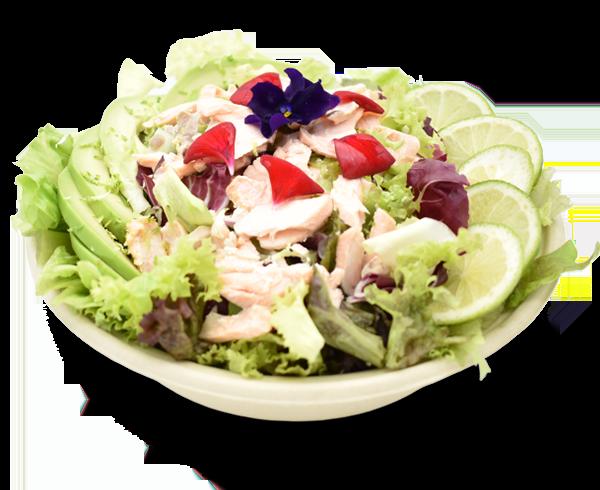 Salmone, insalate verdi, radicchio, rucola, avocado, lime