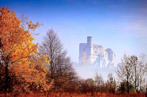 zamek mirow szlakorle gniazda