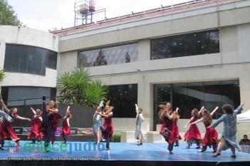 15-07-2019-GRUPOS REPRESENTATIVOS DE BAILES DEL CDI Y MONTE SINAI SE PRESENTARON EN PLAZA MACABI 126
