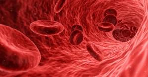 Ilustración de un torrente sanguíneo