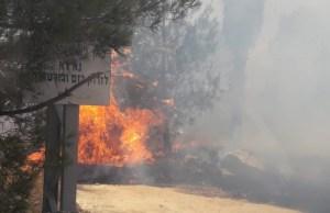 Incendio en Judea y Samaria