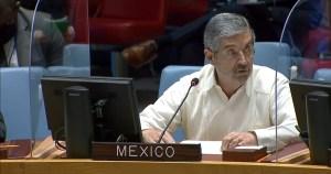 Juan Ramón de la Fuente en el Consejo de Seguridad