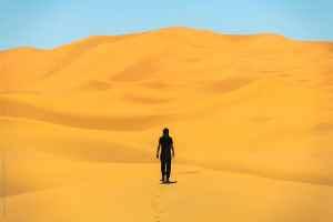 Hombre en el desierto. El maná descendió del desierto