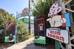 Ben & Jerry's condenó la reacción recibida por su decisión de boicotear los asentamientos israelíes en Judea y Samaria