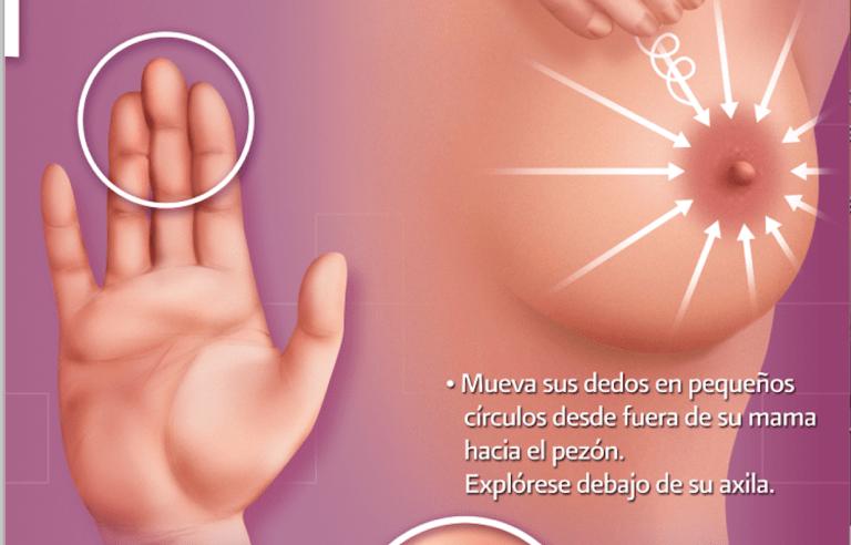 una guía de autoexploración de mama de la Secretaría de Salud en México