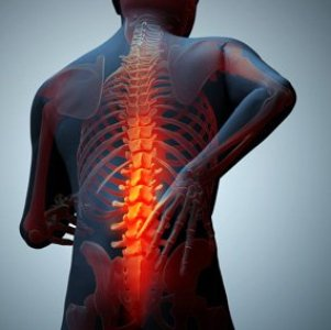 Erase My Back Pain working