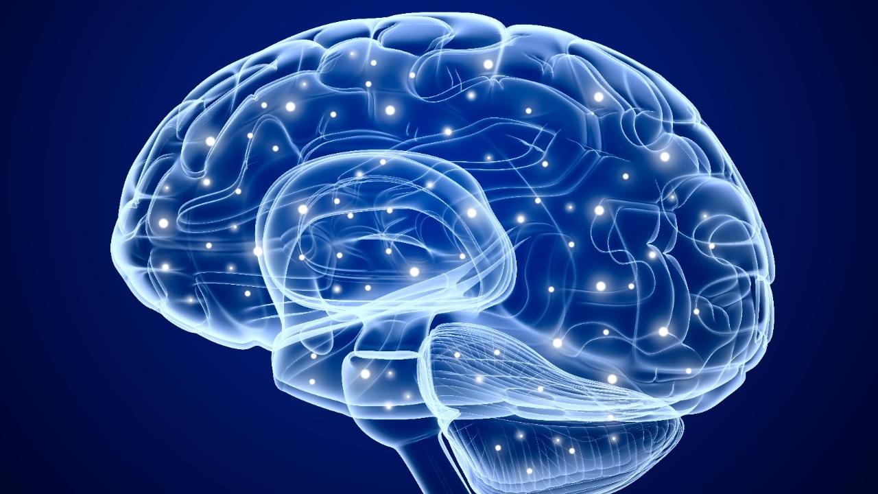 How Inner GPS Improve Brain Health?