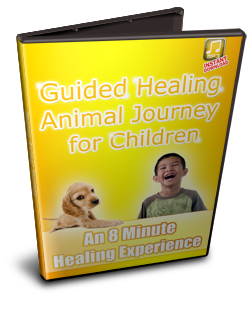 animal-journey