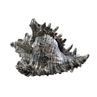 Theodore Alexander Aristotle Shell