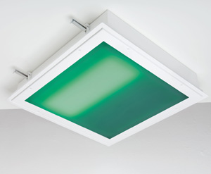 Technology_Kenall_M4SEDI_2x2SYM_green