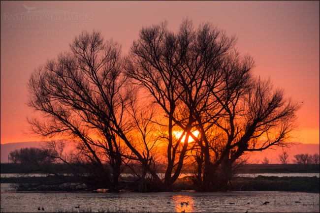 Image: Sunset through clouds at the Merced National Wildlife Refuge, San Joaquin Valley, California