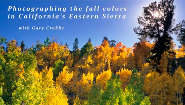 Image: video: Photographing fall colors in the Eastern Sierra, California