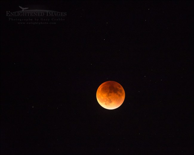 Image: Super-Blood-Harvest Moon during a Lunar Eclipse September 27, 2015