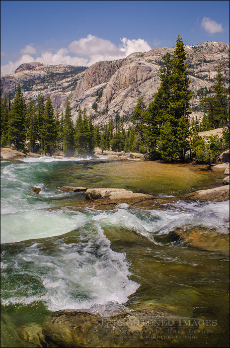 Image: Tuolumne River, Yosemite National Park, California