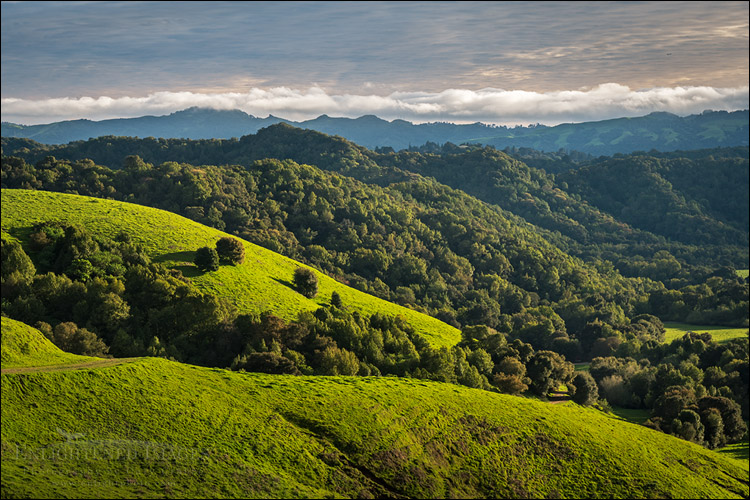 Image: Clouds over Briones Regional Park in spring, Contra Costa County, California