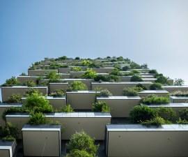 sustainability-1024