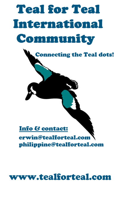 teal for teal international banner2