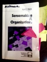 sensemaking-in-orgs-225x300