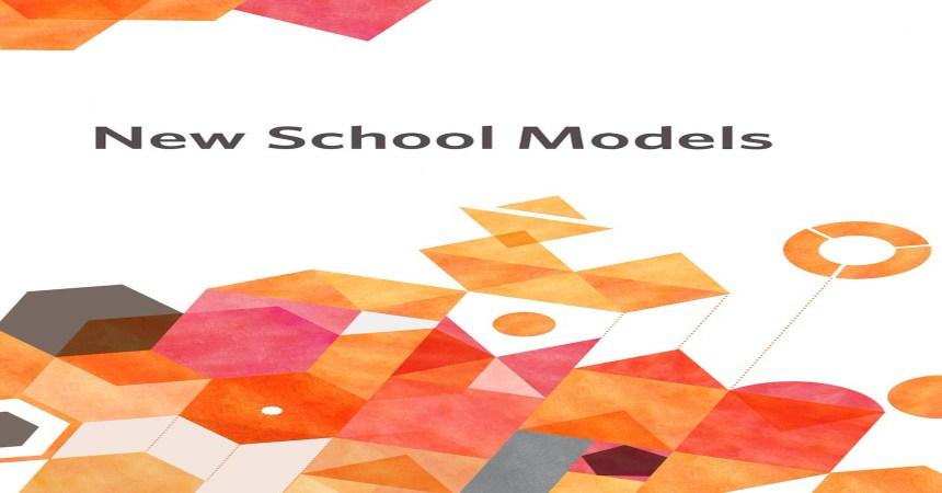 FI Strategic Design and New School Models