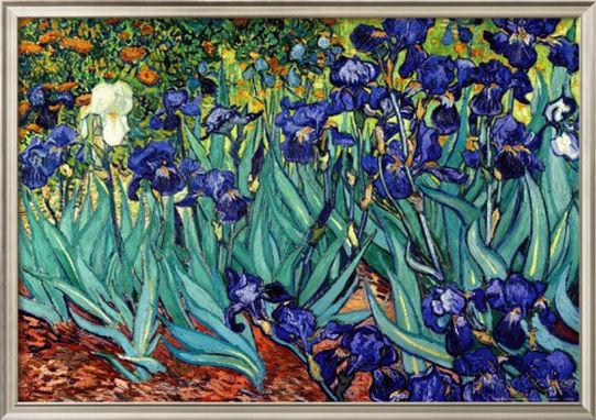 Vangogh Irises