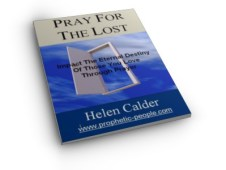 Pray For The Lost e-book cover image