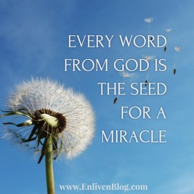 Word from God Miracle