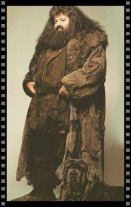 Cómo vestir a tu secundario: Rubeus Hagrid