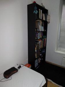 Mi habitación de escribir: cama y estantería