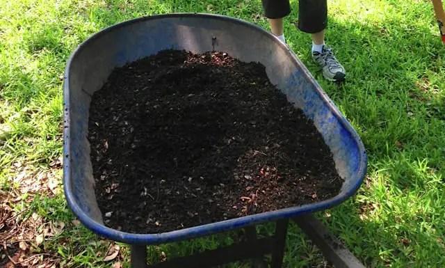 Como hacer compost o tierra de hoja orgnica  En Mi