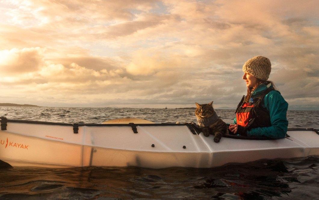 Canoe-Trip-Cats-voyager avec un chat