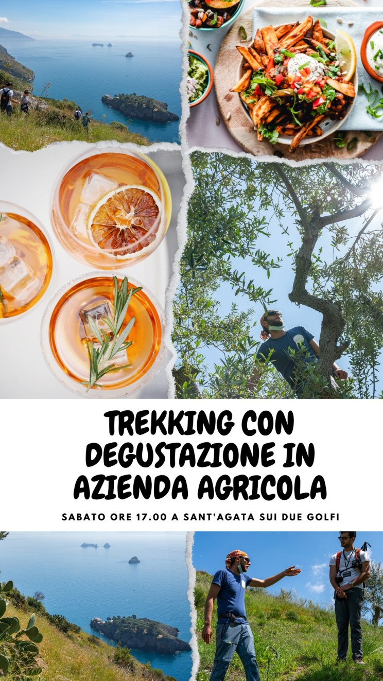 May be an image of drink and text that says 'TREKKING CON DEGUSTAZIONE IN AZIENDA AGRICOLA SABATO ORE 17.00 A SANT'AGATA SUI DUE GOLFI'