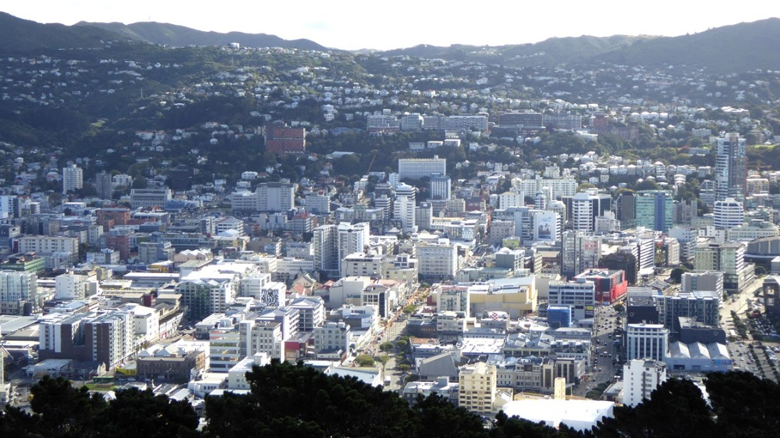 Part of Wellington city from the top of Mt. Victoria.