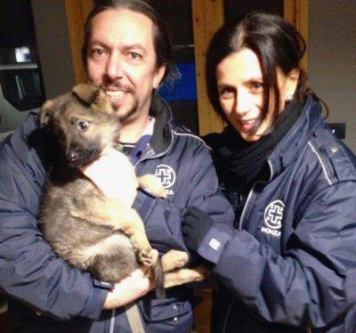 NS-cane Dolce con volontari ENPA
