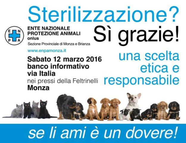 hp-ns_steriliz 2016 cani-gatti