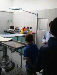 sala chirurgica canile_2
