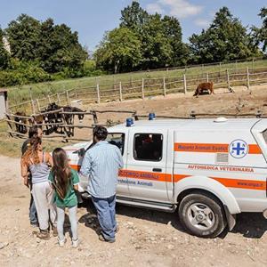 ambulanza enpa