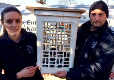gattina Alana in cesto con volontari-NS
