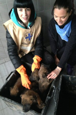 cuccioli con volontari Stefania e Marika-NS_0832
