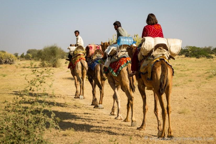 Jaisalmer-18