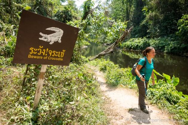 Thailande-Khao-Yai-11