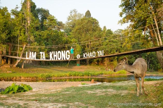 Thailande-Khao-Yai-24