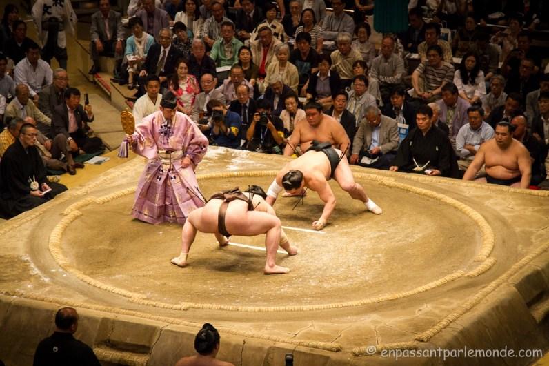 Japon-Tokyo-Tournoi-sumo-17