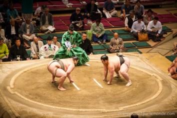 Japon-Tokyo-Tournoi-sumo-4