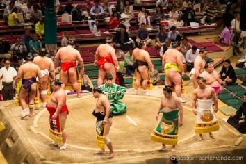 Japon-Tokyo-Tournoi-sumo-6
