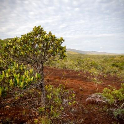Nouméa et le Sud de la Grande Terre