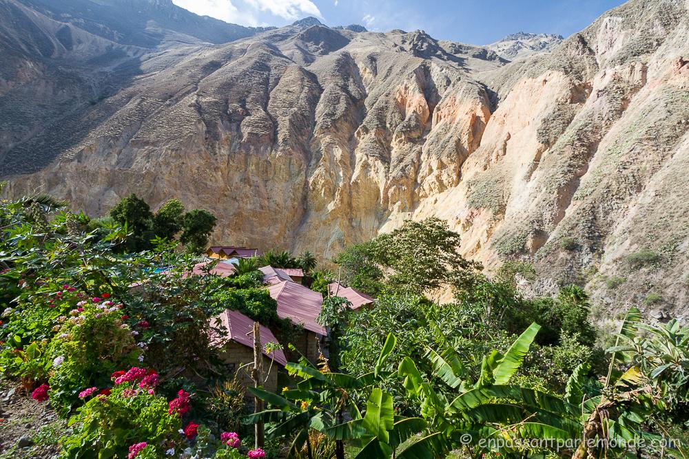 canyon-del-colca-40